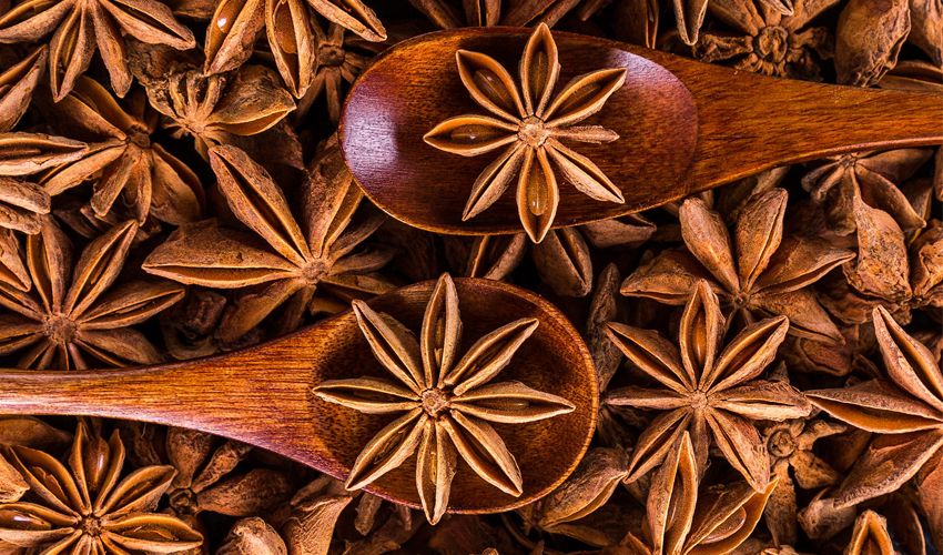 Star Anise - CookingRevived